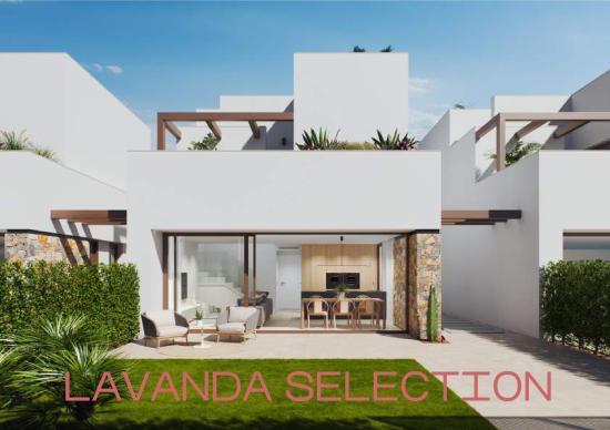 Dossier Lavanda Selection 55 (ENG)_-page-001